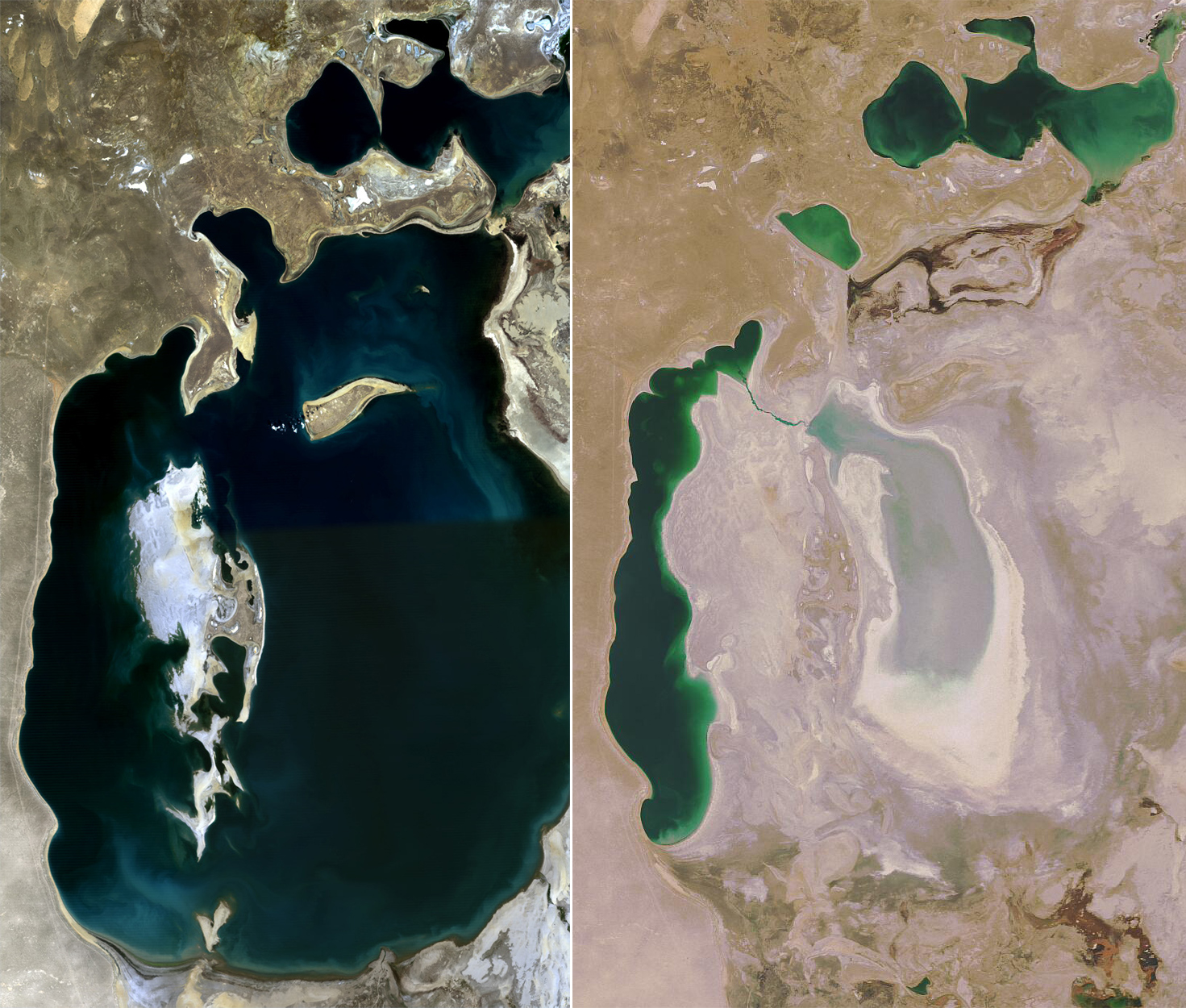 Uzbekistan Calls for International Help Over Aral Sea, Now Almost Dry