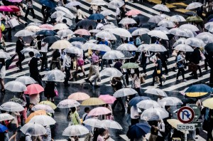 New mathematical law found to beautifully explain crowd phenomena (4)