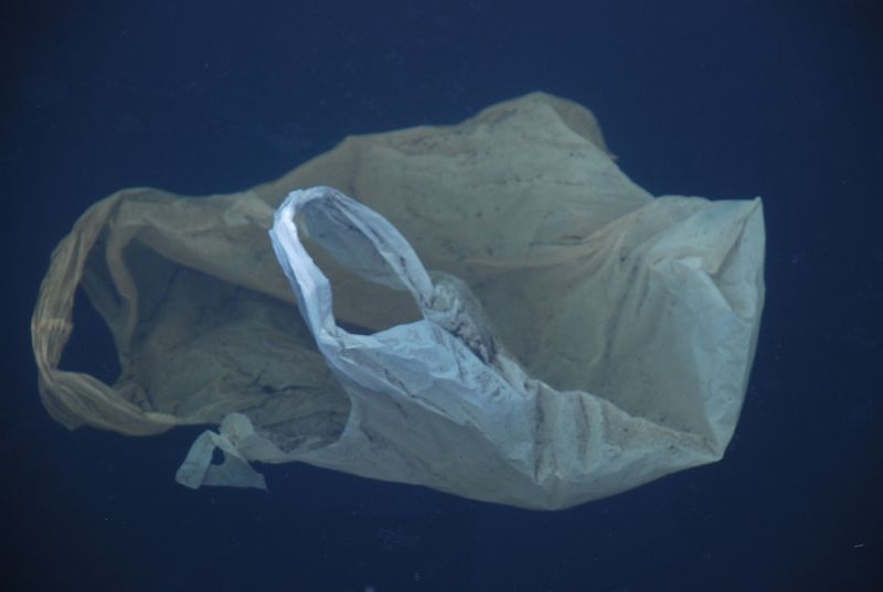 EU plastic bag law